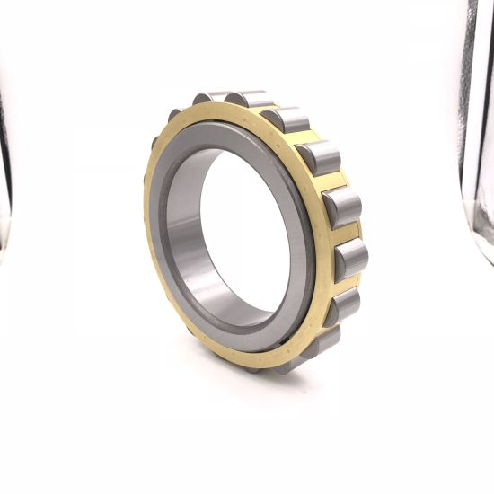 Rn Series Bearings OEM Cylindrical Roller Bearing Rn219m for Auto Parts/Car Parts