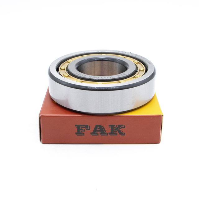 Own Brand Bearing FAK Cylindrical Roller Bearing NJ315