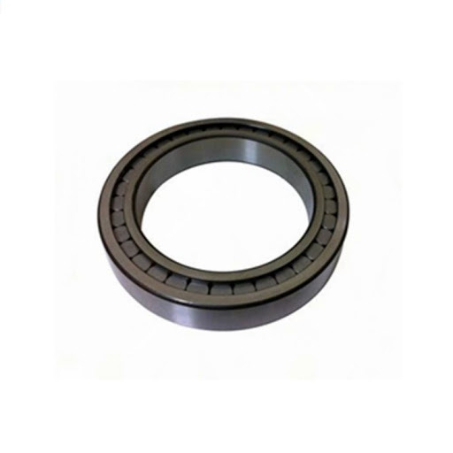 Full Complement SL182914 SL183014 SL182214 SL182314 SL183044 /Nncf3044 with Double Row Cylindrical Roller Bearing
