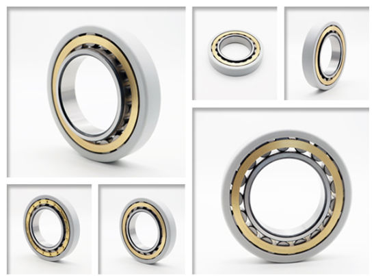 High Quality Electrically Insulated Bearings Nu208 Ecm/C3vl0241 for Motorcycle Accessories