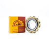 China Supplier Bearing FAK Cylindrical Roller Bearing NF1021M/C4